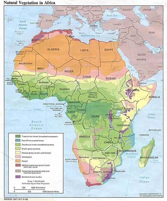 Africa Natural Vegetation